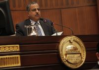 Fahmi to U.S. Lawmakers: Principles of Constitution Agreed, Respect Will of Egyptian People