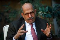 ElBaradei supports Day of Rage march but will not participate