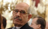 Ex-IAEA chief could become Egypt's leading dissident