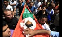 Muslim Brotherhood: Zionist Massacres in Gaza Will Not Weaken Palestinians' Resolve