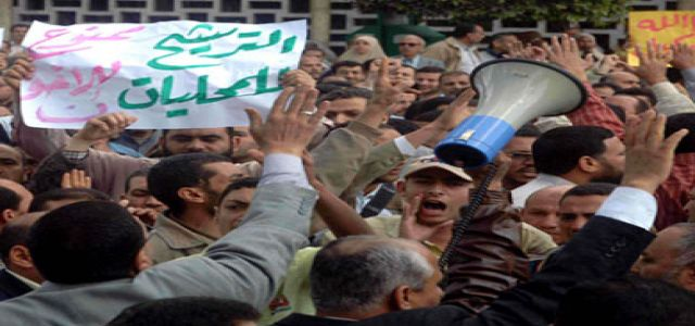 Egypt's Muslim Brotherhood under fire