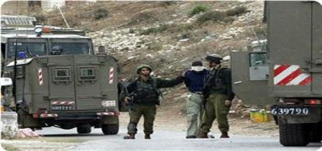 PA security apparatuses and IOF troops kidnap 14 carders of Hamas in WB