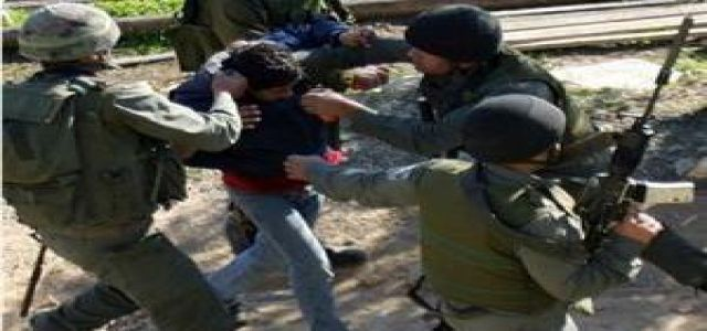 Dozens wounded in confrontation with IOF troops in Na'lin