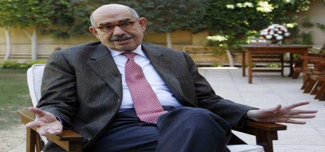 El-Baradei Commends Egyptians' Solidarity
