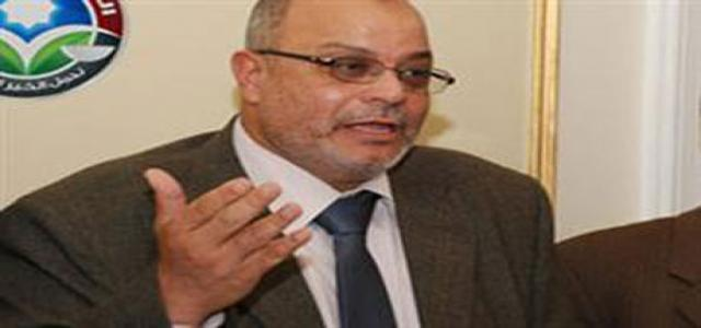 Hussein Ibrahim: Freedom and Justice Party Will Cooperate with All for Egypt Security, Stability