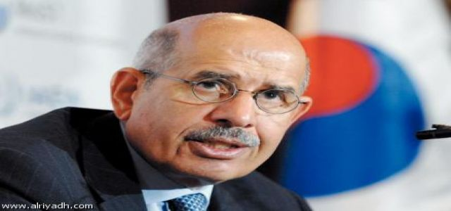 What does ElBaradei want?